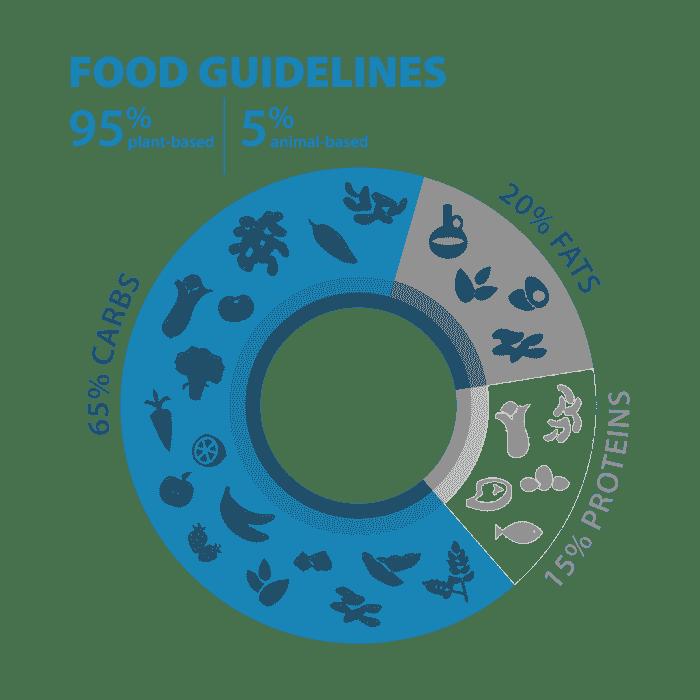 Blue Zones Food Guideline Pie Chart