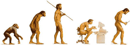 A diagram illustrating the evolution of human