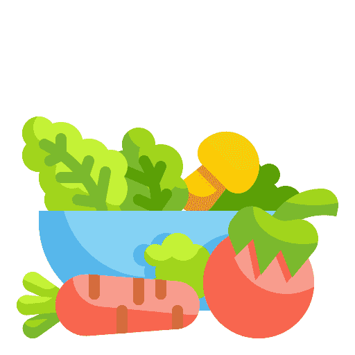 Icon of a healthy bowl of vegetables