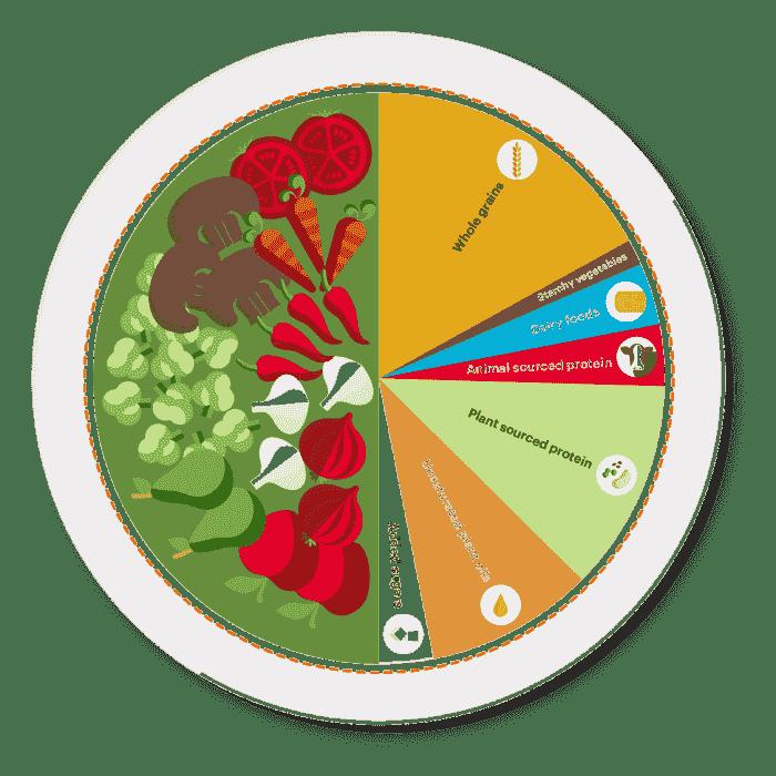 Pie chart of Planetary Health Diet